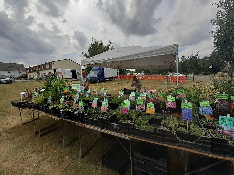 Letní Farmářské a zahradnické trhy, ZahradaVěžky.