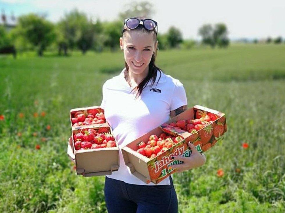 Na samosběr jahod jezdí do Holešova pravidelně Pavlína Vacková ze Vsetína.