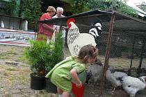 Na takzvané Chalupě zahrádkářů ve Chvalčově se v pondělí 5. července 2010 konala výstava ovoce, květin a drobného zvířectva.