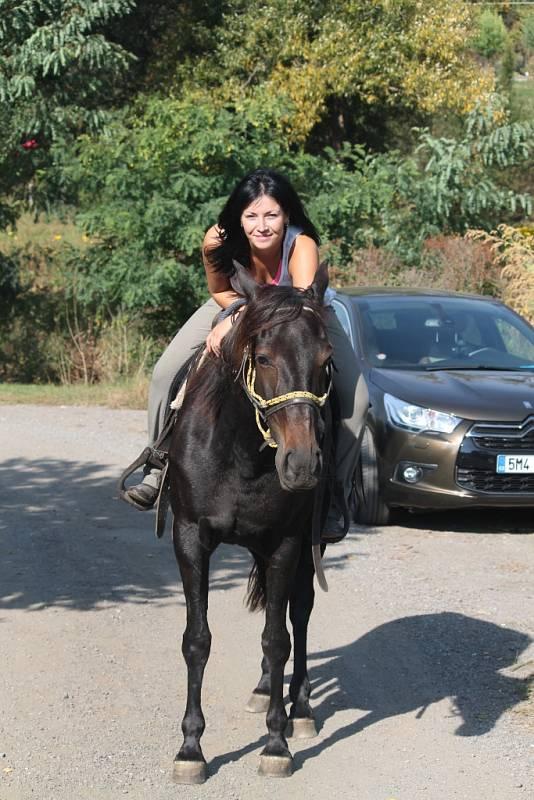 Vlastní kůň? Je to krásný koníček, ale drahý a časově náročný, přesto je pohled ze hřbetu koně nejkrásnější.