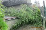 Silný vítr vyvracel stromy po celém kraji - následky bouřky 28.7.2020