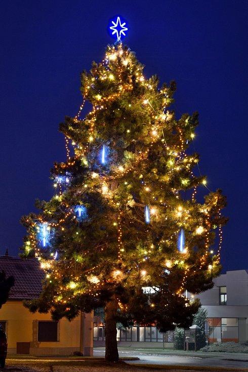 Vánoční strom 2020 v Dolním Němčí