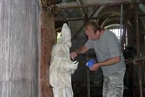 Úřad Zlínského kraje uvolnil dotace na opravu oltářů v kostele Nanebevzetí Panny Marie v Holešově