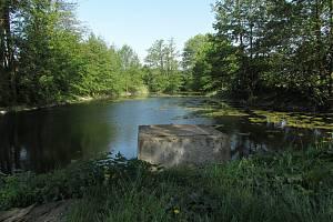 Míškovický rybník.