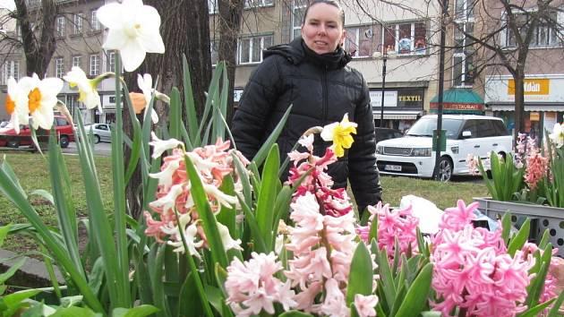Tržnice v Kroměříži rozkvetla jarním kvítím.