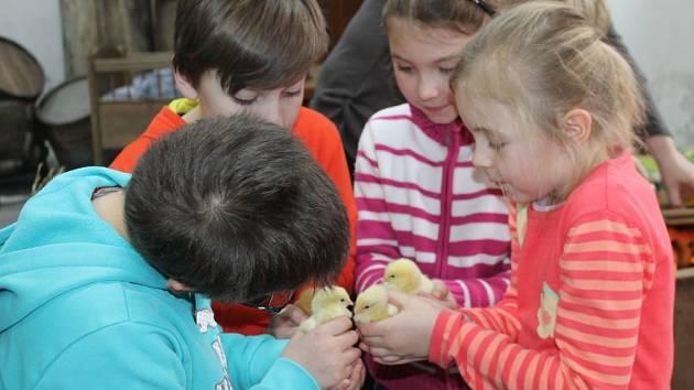 Na Velikonočním hanáckém dvorku v záhlinickém muzeu pletly děti tatary nebo si prohlédly domácí zvířata.