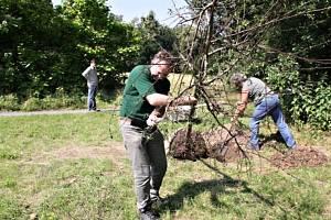 Dárci a obdarovaní stromů pro Podzámeckou zahradu.