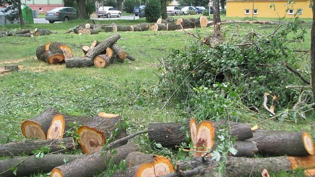 Obyvatele sídliště Sadová v Hulíně vyděsilo vykácení tamního parku, ze kterého během dvou týdnů zmizelo šestapadesát vzrostlých stromů. Podle starosty města Romana Hozy se však jedná pouze o rekultivaci. Na místě vznikne hřiště a několik parkovacích míst