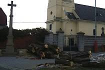 Dva vzrostlé akáty u kostela v Cetechovicích byly během pondělí a úterý pokáceny. Vzhledem k jejich stáří a chorobám, kterými byly napadeny, bylo nutné stromy pokácet.