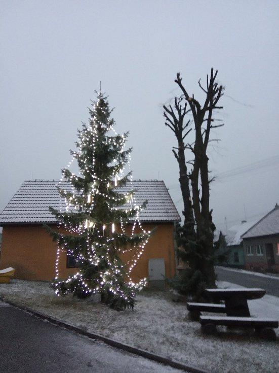 Vánoční strom 2020 v Nově Dědině