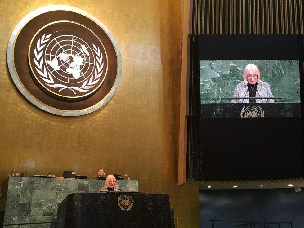 Kroměřížská europoslankyně Olga Sehnalová vystoupila druhý dubnový týden na půdě Valného shromáždění OSN v New Yorku.