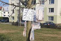 """Strom """"Rouškovník"""" se nachází před domem Družba 1195 v Hulíně. Lidé si tam mohou vzít zdarma roušku."""