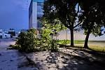 Větve padaly i před hulínskou Pilanou - následky bouřky 28.7.2020