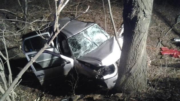Čelní náraz do stromu mezi obcemi Rusava a Brusné si vyžádal jedno těžké a jedno lehké zranění