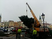 Radnice v Kroměříéži musela v pondělí 4. prosince vyměnit vánoční strom na náměstí: ten nový nakonec pochází z ulice Pod Barbořinou.