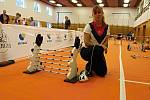 Závody v Králičím hopu ve sportovní hale ve Zdounkách