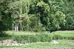 Průběh revitalizace vodního systému v Podzámecké zahradě v Kroměříži. Červen 2020, Divoký rybník.