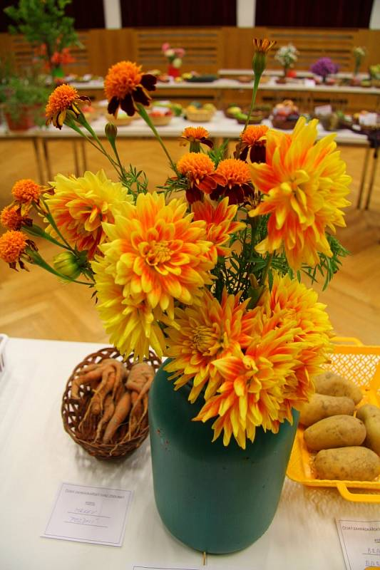 Výstava ovoce, zeleniny a květin.