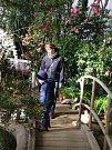 Kamélie v Květné zahradě v Kroměříži patří mezi nejstarší ve Střední Evropě. O rostliny pečuje již sedmá generace zahradníků.