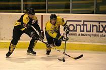 Výkonem proti Moravským Budějovicím se hokejisté Kroměříže odměnili svým věrným fanouškům.
