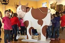 Muzeum Kroměřížska si pro školky i školy připravilo novou výstavu s názvem Když jsem já sloužil to první léto. Děti tam poznají život na statku i hospodářská zvířata.