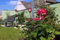 Růžový parčík v Hulíně.