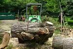 Zahradníci v úterý 2. července uklízeli v zámecké zahradě po bouřce.