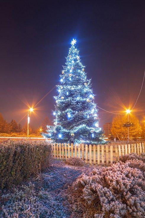 Vánoční strom 2020 v Otrokovicích