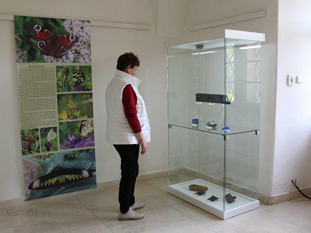 Výstava s názvem Létající drahokamy přibližuje zdánlivě nesourodé výtvory přírody, které ale spojují jejich tvary a krása.