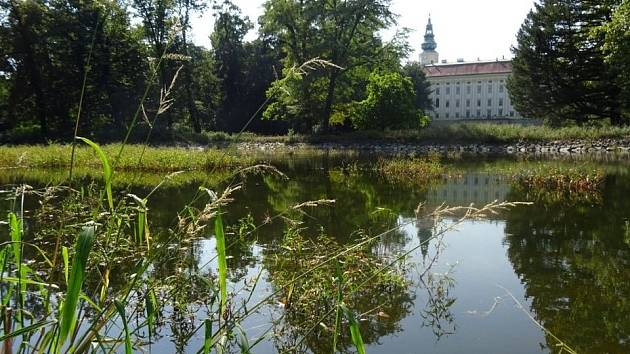 Obnova Chotkova rybníka.