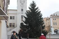 V Kroměříži na Velkém náměstí už stojí vánoční strom.