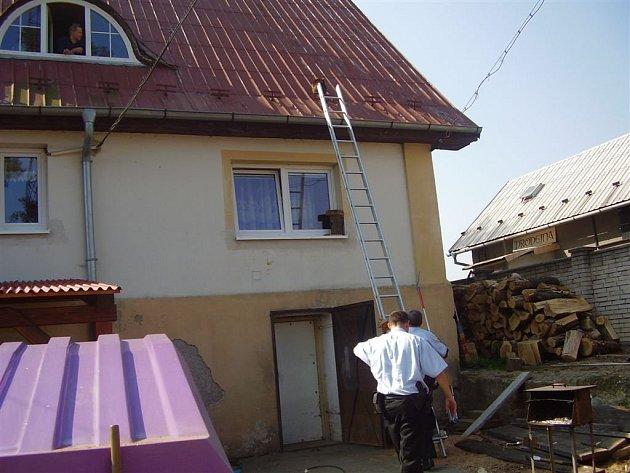 Kroměřížští strážníci odchytávali mývala, kterého objevil na střeše domu místní obyvatel.