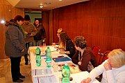 Reportáž z volební místnosti v Osvětimanech