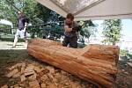 Mezinárodní sochařské sympozium Bystřické dřevosochání 2016 v Bystřici pod Hostýnem.