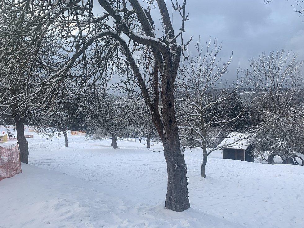 DESET CENTIMETRŮ. Tolik přírodního sněhu napadlo v okolí areálu Troják. Pro běžkaře je to špatná zpráva. Sněhu totiž není dost na to, aby mohla být zprovozněna Hostýnská běžecká magistrála.
