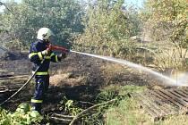 Rozšíření požáru na keře a ovocné stromy hasiči zabránili