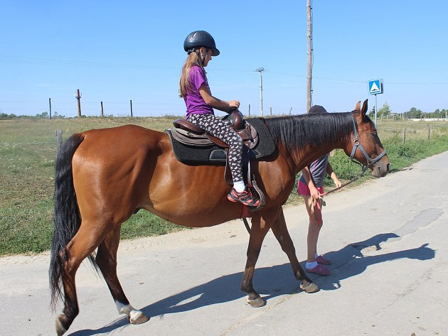 V rámci příměstského tábora Za zvířátky kolem světa vyrazily děti s TyMy centrem i na Ranč u Tuffa v Dobroticích, kde si vyzkoušeli jízdu na koni či poníkovi.