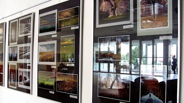 Členové Fotoklubu Domu Kultury Kroměříž představují svou tvorbu za uplynulý rok.