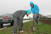 V rámci akce Zasaď strom, vyroste nám alej, kterou uspořádalo město Hulín, vysadili dobrovolníci v ulici Antonína Dvořáka 21 ořešáků.