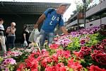 Výstava květin Floria Jaro 2018 v Kroměříži