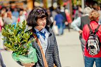 Na kroměřížském výstavišti začal v sobotu 30. dubna čtyřicátý ročník výstavy Floria Jaro: nabídl kromě tradičních květin také zajímavý doprovodný program.
