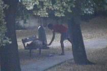 Neznámý zloděj okrádal spící.
