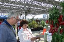 Ve čtvrtek 4. října začala tradiční výstava Floria. Tentokrát na novém místě na výstavišti v Kroměříži. Nové prostory se líbily jak vystavujícím, tak také návštěvníkům. Výstava končí 7. října 2012.