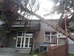 Na střední Moravě včetně Kroměřížska řádil v neděli 29. října extrémně silný vítr: zlomený kmen stromu zkomplikoval lidem život například  v ulici Antonína Dvořáka v Hulíně u jedné z tamních firem.