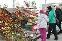 Na Florii Jaro v Kroměříži, která odstartovala 3. května, zavítalo první den hned děvět a půl tisíce návštěvníků. Na Florii je možné koupit vše od sazenic až po zahradní techniku.