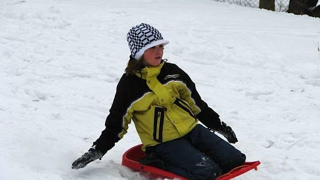 V neděli 31. ledna 2010 na Nové Dědině uspořádali tradiční sáňkařské závody pro děti.