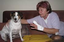 Starší žena z Kroměříže v neděli 22. srpna 2010 přišla o prst. Za vše mohl spor se sousedem, kterému v opilosti vadil její pes.