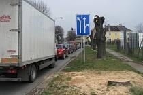 Kvůli havarjnímu stavu byly stromy v kroměřížské Kotojedské ulici ořezány. Za pár dnů budou i kompletně posekány. Na jejich místě nechá radnice vysázet nové.