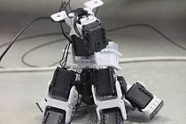 Studenti kroměřížské střední školy technické COPT ukázali dětem ze základní, čím se ve výuce zaobírají a hlavně baví. Děti si tak v kroměřížské knihovně v úterý mohly vyzkoušet autíčko na dálkové ovládání, robo psa, dokonce zjistili, jak funguje 3D tisk