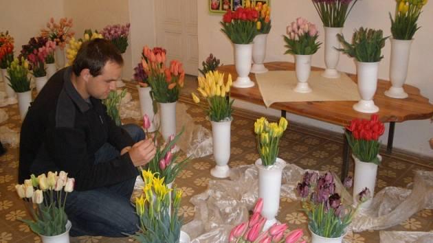V sobotu 2. května začal ve Věžkách tradiční jarní veletrh květin a zahradních potřeb, letošní ročník ozvláštnila výstava tulipánů